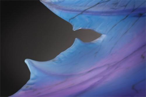 Oceanic Maple, detail, 2012, by Randy Walker